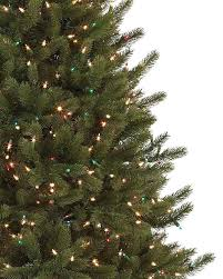 Christmas Tree Storage Containers Canada by Vermont White Spruce Flip Tree Balsam Hill