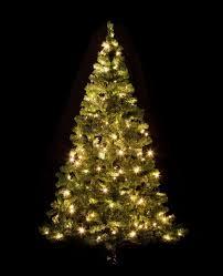Christmas Tree Indoor Lights