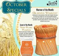 Pumpkin Scentsy Warmer 2015 by 17 Best My Scentsy Warmer Of The Month Images On Pinterest