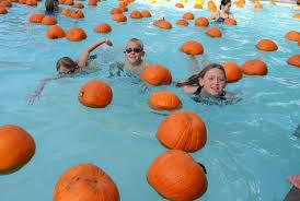 Pumpkin Patch Roseville Ca by Floating Pumpkins Placer Sports