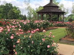 Thomasville Rose Garden | Official Georgia Tourism & Travel Website ... Michael Barr State Farm Insurance In Thomasville Ga Home Auto Thomasville Gathomas Cophotos Church Attorney Bank Restaurant Dr Veterans Festival Vet Fest Visit Georgia 12 Trails To This Spring Official Tourism Travel Hand Tools Excavators Cairo Rental Equipment Sales Inc New 2018 Jeep Renegade For Sale Near Valdosta Toyota Camry Xle 4dr Car 17930 Upcoming Christmas Light Displays Toyota Seball Splits With Harlem Will Play Game 3 Sports Police Kill Suspect Driving Towards Officers Youtube Georgias Oldest Drug Store Calls Home Progress