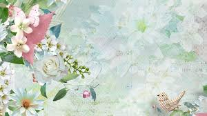 Floral Blossoms Pastel Spring Soft Bird Butterflies Abstract Flowers Summer Leaves Gathering Country Amazing Flower Desktop
