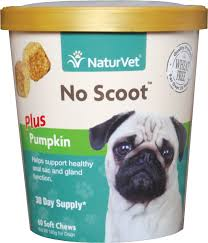 Dog Constipation Pumpkin by Naturvet No Scoot Dog Soft Chews 60 Count Chewy Com