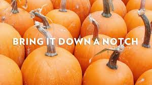 Pumpkin Spice Mms Canada by Everyone Needs To Calm The Down About Pumpkin Spice
