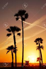 California Beach Sunset With Palm Trees Stock Photo