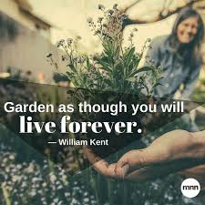 Gardening Quote Words Of Wisdom For The Green Thumb In All Us