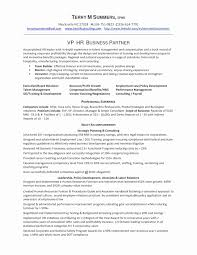 Pastry Chef Resume New Template C Unique Business Analyst Sample Doc Of