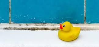 schimmel in der dusche entfernen was hilft