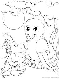Bird In A Tree Coloring Page KinderArt