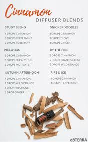 Fresh Drop Bathroom Odor Preventor Ingredients by Best 25 Cinnamon Essential Oil Ideas On Pinterest Cinnamon Bark