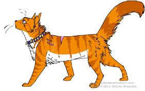 warrior cat names i can make a warrior cat name for u or give u a description if u