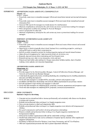 Download Advertising Sales Assistant Resume Sample As Image File