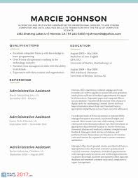 Paraprofessional Resume Example New Of A Professional Novasatfm
