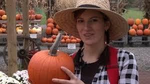 Atlantic Giant Pumpkin Taste by Heirloom Seeds Vegetable Seeds And Plants Pumpkin Atlantic Giant