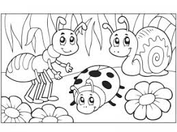 Bug Coloring Pages For Toddlers