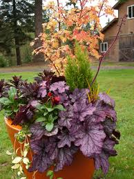 Garden Design Garden Design with Knollwood Garden Center and