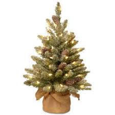 Snowy Concolor Fir Small Tree In Burlap With LED Lights Timer