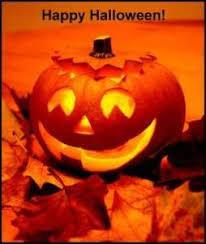 Alameda Pumpkin Patch 2015 by October 2015