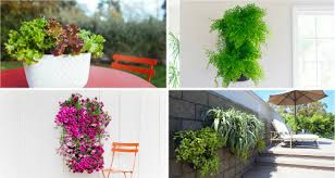 Woolly Pocket Living Wall Planter 2 Vertical Gardening Systems