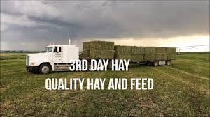 Tampa Hay And Feed Store | 3rd Day Hay 352-629-1513 - YouTube Soundwaves Of Tampa Home Facebook La Boutique Mobile Fashion Truck In Fl Youtube Intertional Used Truck Center Of Indianapolis Intertional Used A Boutique With A Chic Flowery Exterior Complete From Discounts On Ford F 150 Extended Cab Bay Vehicle Wraps Car Trucks Van More Food Truck Wikipedia Nissan Frontier Parts 4 Wheel Coverage The 75 Chrome Shop Show April 2017 Updated 82017 Accsories Central Florida Lakeland White F150 Ladder Rack Topperking Sears Is Closing Its University Mall Store