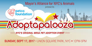 Adoptapalooza Union Square: Sunday, September 17, 2017 10 Awesome Places To Adopt A Dog Or Cat In Nyc Adopt Pet Hells Kitsch New York Today The Lunar Year Laundromat News Aspca Car Seat Cover For Dogs Walmartcom Home Aspcapro Worlds Most Recently Posted Photos Of Aspca And Nyc Flickr Spca Wchester County Mobile Animal Clinic Brooklyn City Bring Cat Free From The Aspcas Friday Adoption 25 Best Memes About Narcotics