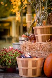 Pumpkin Patch Miami Lakes by 25 Best Glass Pumpkin Patch Images On Pinterest Pumpkin Patches