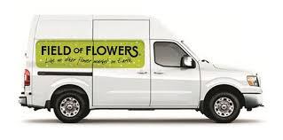 Flower Delivery Davie