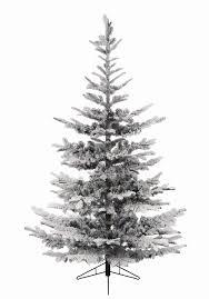 Christmas Tree Flocking Spray Uk by 9ft Snowy Nobilis Fir Life Like Artificial Christmas Tree Hayes