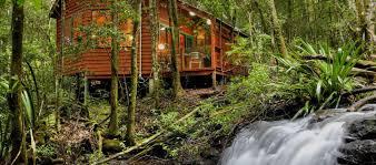 100 Tree Houses Maleny Mouses House Rainforest Retreat Gold Coast Hinterland