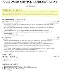Profile Resume Template Sample Professional Examples State Example