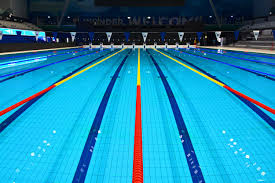Olympic Swimming Pool Free Photo Try Adobe Stock Download 10 Photos