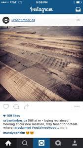 Home Decor Liquidators Fenton Mo by 26 Best A Flooring Images On Pinterest Flooring Ideas Lumber