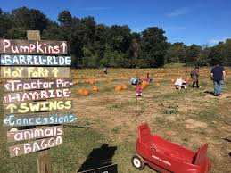Pumpkin Patches In Arkansas by Roseberry Farms
