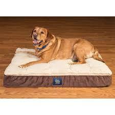 serta perfect sleeper elite orthopedic pillow top pet bed choose