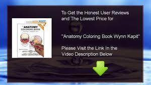 Best Anatomy Coloring Book Wynn Kapit
