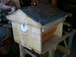 Che Guebee Apiary: January 2013 Bkeeping For Beginners Pt1 Video On How To Build A Top Bar Hive Feeder Set Up Behind Follower Board In Bkeeper Top Bar Hive Melissas Honey Bees Epic Beehive Swarm Trap Youtube How Transfer Brood Comb From Langstroth Frames New 200 Hives The Lowcost Sustainable Way A Bee Keeping Make Favorite Sewisabel Backyardhive And Bkeeeping Supplies Sale To Install Package Beverly Getting Started Your First Year As Beehive By Eco Box Eco Bee Box Modern