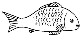 Fish black and white milk fish clipart black and white clipartfox