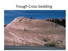 Trough Cross Bedding by Cross Bedding And Other Indicators In Sedimentary Rocks What Is So