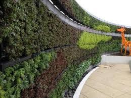 Green Wall Garden Planters DeepStream Designs
