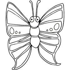 Animal Colour Book Color Butterfly Pictures Only Coloring Pages