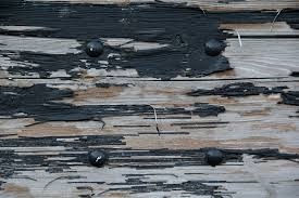 Wood Textures Texture Grain Peeling Paint Old Dirty Grunge 3888x2592