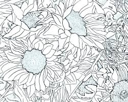 Sunflower Coloring Pages To Print G Free Books And Attractive Printable Simple