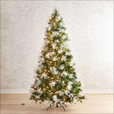 Hayneedle Flocked Christmas Trees by Christmas Pre Lit Flocked Christmas Tree Lovely Pre Lit