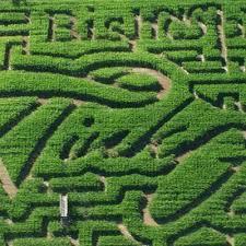 Pumpkin Patch Dixon Il by Best Corn Mazes Near Sacramento Cbs13 Cbs Sacramento