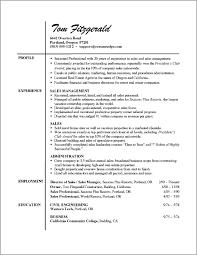 Professional Resume Examples Engineering