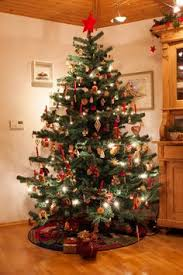 Barcana Christmas Tree For Sale by Finley Full Pre Lit Christmas Tree With Berries And Pine Cones