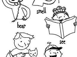 Children 5 Senses Coloring Page Wecoloringpage