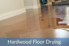Hardwood Floor Buckled Water by Water On Wood Floor Gallery Home Flooring Design