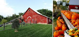 Omaha Pumpkin Patch by Omaha U0027s Best Pumpkin Patches Apple Orchards Corn Mazes More