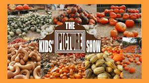 Types Of Pumpkins And Squash by Pumpkins And Squash Vocabulary Flash Cards The Kids U0027 Picture